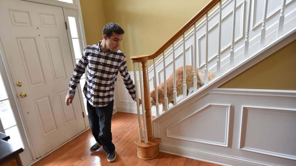 Samuel, followed by the family dog Chassie, comes downstairs to greet his father Alex.